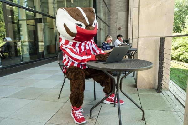 Bucky - with-laptop